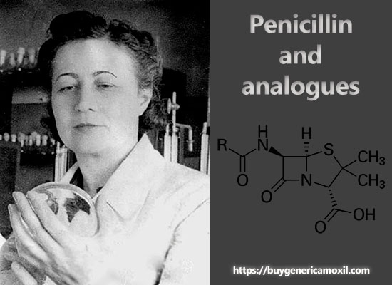 Penicillin and analogues