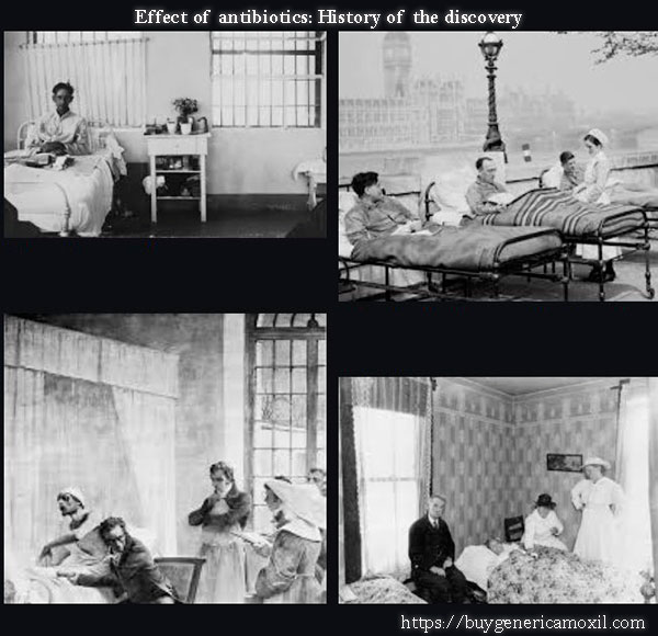 effect of antibiotics